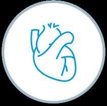 Specialties - Cardiology